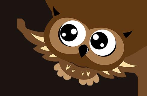 Mascotte Owl Kids